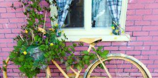 breve storia della bicicletta