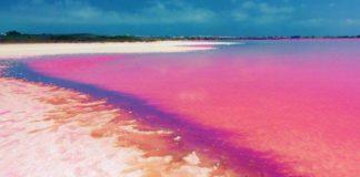Lago di Retba: il lago rosa