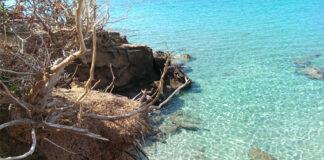 Sardegna: mare e natura